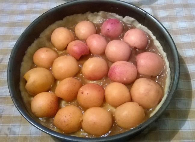 tortasbri (3)