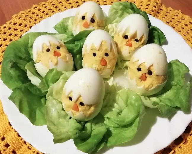 pulcini di uova (1)
